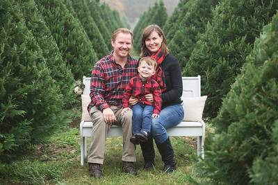 Miranda Wickles Family-Christmas Minis 2017-Edited