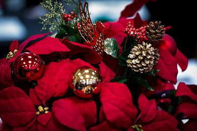 MJSC_Christmas Open House_2017_006