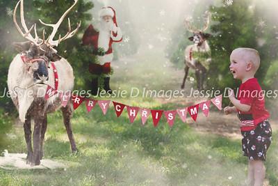Christmas Photo (31)
