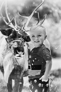 Christmas Photo (32)a