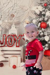 Christmas Photo (26)