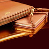 Bond Caramel with iPhone 6 Premium Folio Aurea