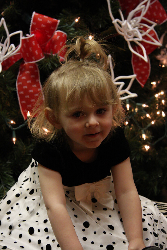 Dec 12 2009_2177