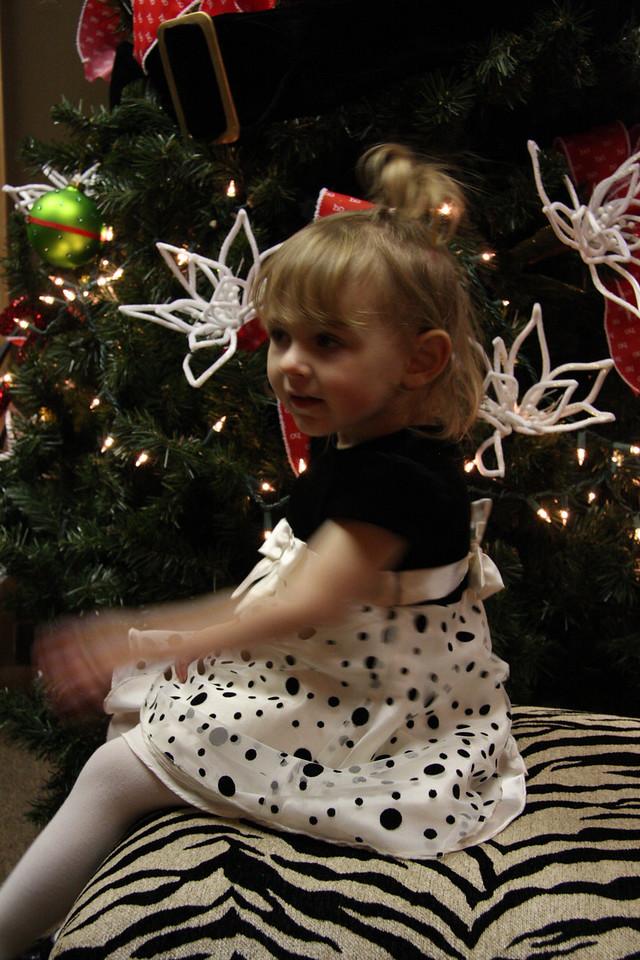 Dec 12 2009_2190
