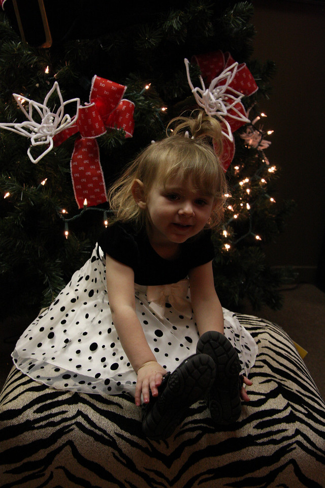 Dec 12 2009_2175