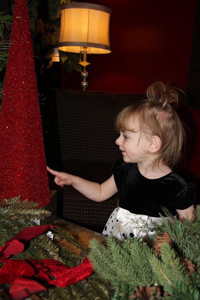 Dec 12 2009_2158