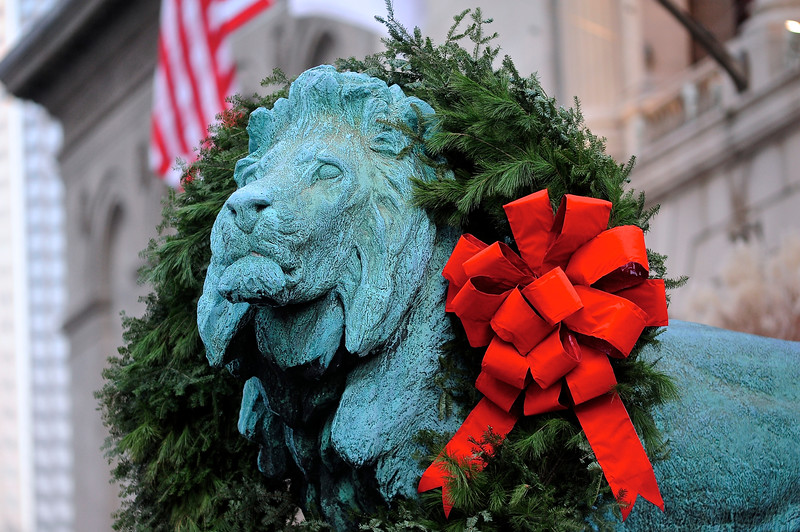 Holiday Lion at The Art Institute - Ready for My Close-Up