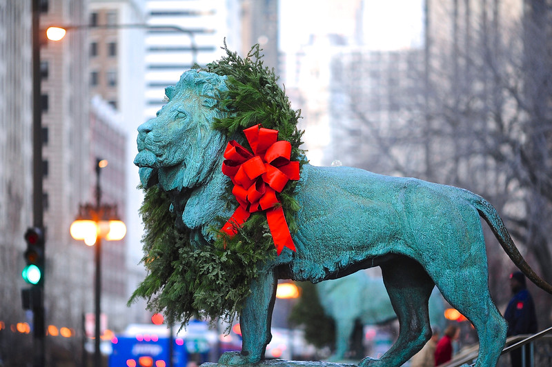 Holiday Lion at The Art Institute - Take 3