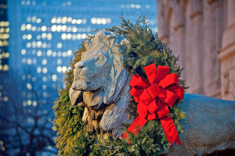 Holiday Lion at The Art Institute - Take 6 - Nighfall