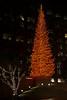 Christmas Tree at SF B of A