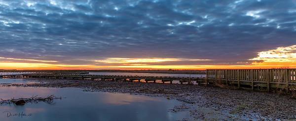Sunrise over the Boardwalk at Shoveler's Pond
