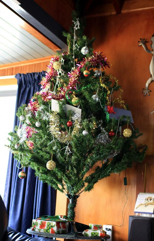 Christmas 054.JPG