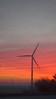 Northern Indiana sunrise with wind turbine
