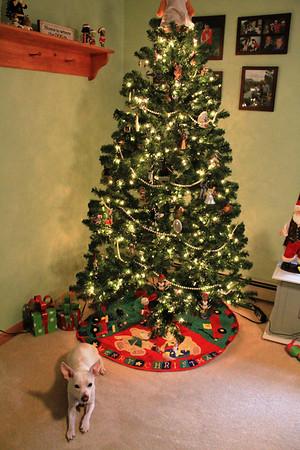 Christmas Time 2013