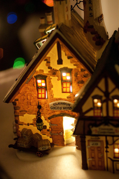 Dickins Christmas Village (2 of 5)