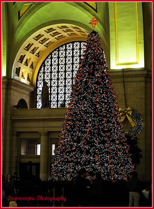 December 10, 2011. Union Station, Washington, DC.