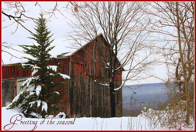 * December 24, 2011. Winter wonderland. Morgan County, WV.