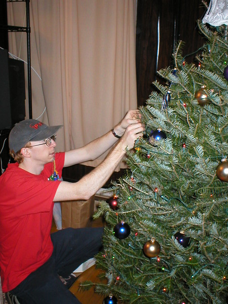 2002_Tree