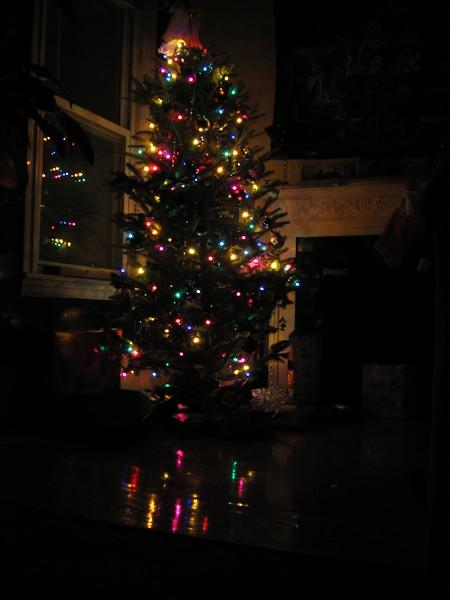 2004_TreeLights