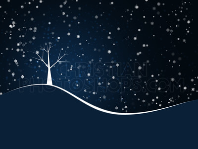 Tree on hill with snow