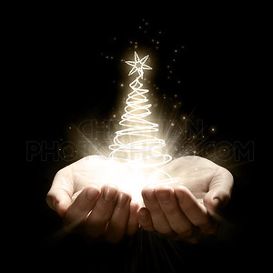 Holding a Christmas tree