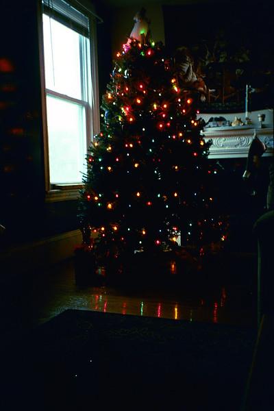 2003_TreeLights