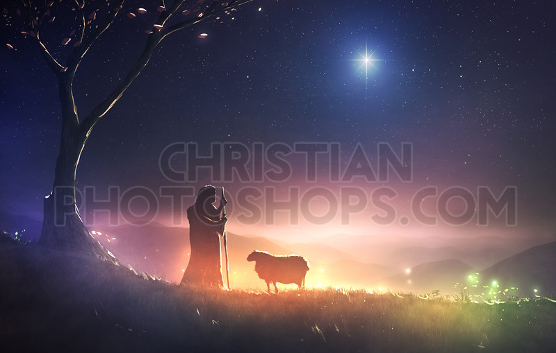 Shepherd and star of Bethlehem
