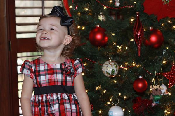 Wallis Family Christmas