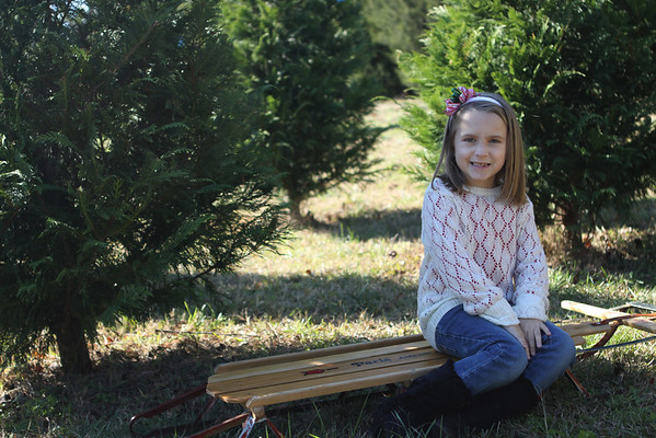 Ethan & Lexis Christmas Tree Farm