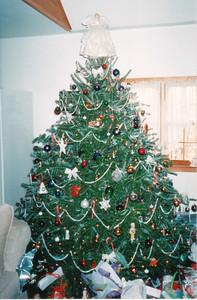 Christmas 2000 Mom & Dad's House
