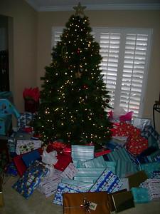 The Putman's 2007 Christmas Tree.