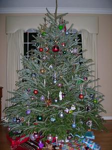 Michael & Kelly's 2007 Christmas Tree - at night.