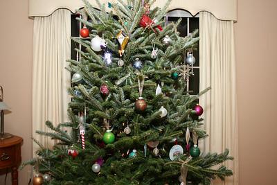 Top half of tree.