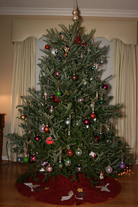 Our 2008 Tree!!!!