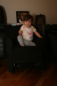 Memphis in her new chair.