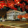 The Square in Oxford is beautiful at Christmastime!