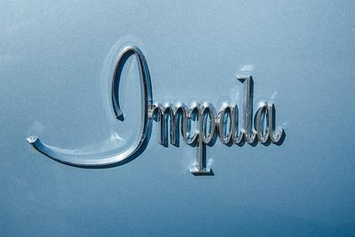 Baby Blue Impala