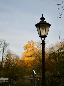 Wittelsbacher Park