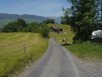@RobAng, Juni 2014 / Diechtersmatt, Sachseln, Kanton Obwalden, CHE, Schweiz, 853 m ü/M, 2014/06/07 13:47:00