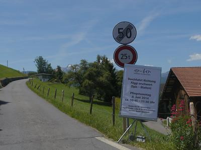 @RobAng, Juni 2014 / Edisried, Wilen (Sarnen), Kanton Obwalden, CHE, Schweiz, 535 m ü/M, 2014/06/07 12:57:03