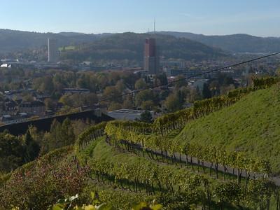 Grossstadt-Reben (smugmug)