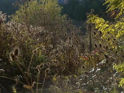 @RobAng November 2014 - Oberi/Neuhegi (Spielort Karls-Kühne-Gassenshow)