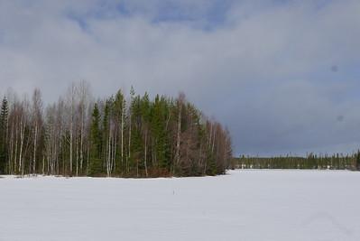 @RobAng 15.03.17, 13:05: Tåsjöedet, Hoting, Jämtland, Schweden (SWE)