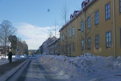 @RobAng 06.03.17, 12:12: Teg, Umeå, Västerbotten, Schweden (SWE)