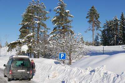 @RobAng 06.03.17, 14:04: Hökmark, , Västerbotten, Schweden (SWE)