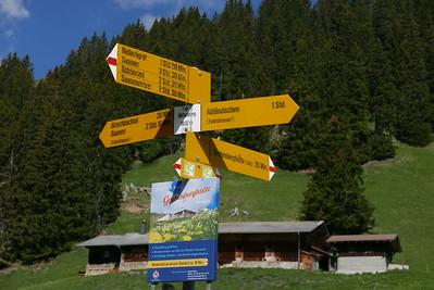 @RobAng 27.05.17, 10:54: Obere Ruedersberg, 1636 m, Abländschen, Kanton Bern, Schweiz (CHE)