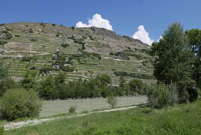 @RobAng 28.05.17, 11:20: Champlan, 492 m, Champlan (Grimisuat), Canton du Valais, Schweiz (CHE)