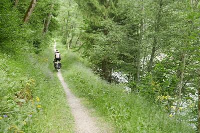 @RobAng 01.06.17, 15:27: Danis, 805 m, Danis, Kanton Graubünden, Schweiz (CHE)