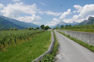 @RobAng 02.06.17, 13:33: Maienfeld GR, 537 m, Maienfeld, Kanton Graubünden, Schweiz (CHE)