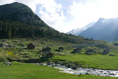 @RobAng 31.05.17, 18:02: Pardatsch Dadens, 1557 m, Platta, Kanton Graubünden, Schweiz (CHE)